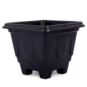 Vaso Plástico para Plantio de Mudas e Pré Bonsai de Alta Qualidade 4 Litros