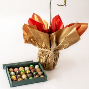 Orquídea plantada e caixa de Doces Finos sortidos Valmir Rodrigues