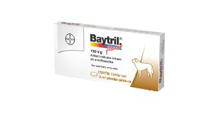 Antibiótico Bayer Baytril Flavour Enrofloxacino 150 mg - 10 comprimidos