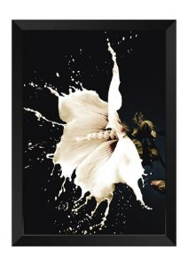 Quadro - Floral Splash White