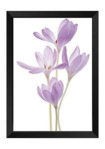 Quadro - Floral Delicado Violeta