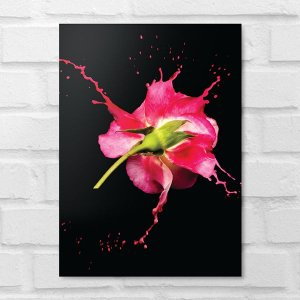 Placa Decorativa - Floral Splash Pink