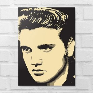 Placa Decorativa - Elvis Presley Poster