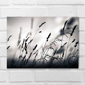 Placa Decorativa - Silhueta Planta ao Amanhecer