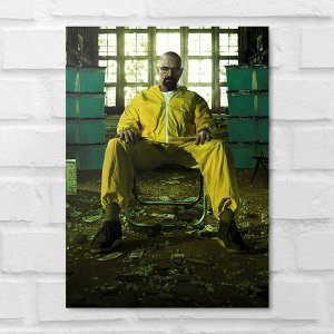 Placa Decorativa - Breaking Bad Walter White