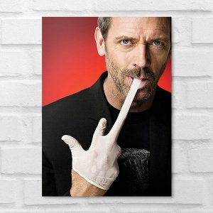 Placa Decorativa - Dr. House