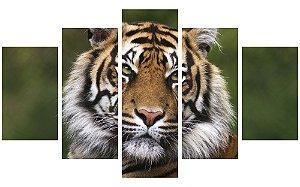 Painel Mosaico Decorativo em 5 partes - Tigre