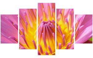 Painel Mosaico Decorativo em 5 partes - Flores 3