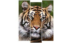Painel Mosaico Decorativo em 3 partes - Tigre