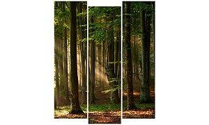 Painel Mosaico Decorativo em 3 partes - Floresta