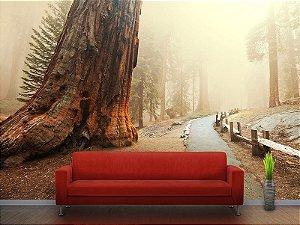 Painel Parede Fotográfico Caminho para o Bosque