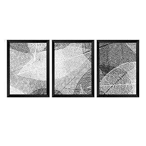 Kit de 3 Quadros Textura de Folhas
