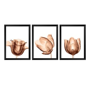 Kit de 3 Quadros Flores RaioX Rose Gold