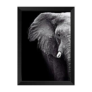 Quadro Elefante P&B