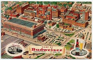 Cartão Postal Original Antigo, Publicidade, Fábrica de Cerveja Budweiser, Não Circulado