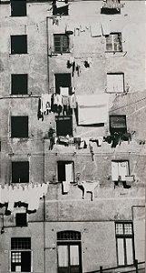 """JEAN LECOCQ - Fotógrafo Premiado - Fotografia Original Titulada """"Dia de Sol"""" - 39x22cm"""