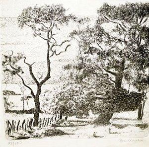 Babinski - Quadro, Gravura Original Assinada e Emoldurada