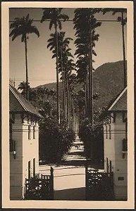 Rio De Janeiro - Jardim Botanico, Turismo Carioca - Cartão Postal Antigo Original, Fotográfico