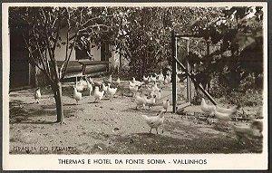 São Paulo - Vallinhos, Thermas Hotel Da Fonte Sonia, Cartão Postal Antigo Fotográfico