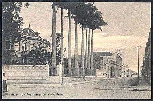 Santos - Av. Conselheiro Nebias  - Cartão Postal Antigo, Tipográfico Original