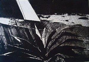 Evandro Carlos Jardim - Xilogravura Original Assinada