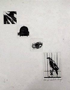 Iole Di Natale - Arte em Gravura Original, Assinada, Série Pássaros