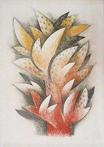 Marcos Concílio - Arte em Gravura Original Assinada, 1983