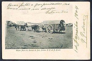 Rio Grande do Sul - Pelotas, Carreta de Bois, Cartão Postal Tipográfico Antigo Original de 1904