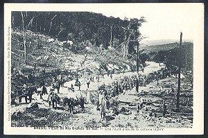 Rio Grande do Sul - Ijui - Caminho para a Colonia de Ijuhy, Cartão Postal Tipográfico Antigo Original