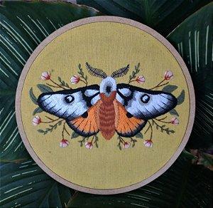 Mariposa Maravilhosa