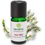 Óleo Essencial de Tea Tree (Melaleuca) 10ml | Terra Flor