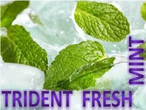 Líquido Trident Fresh Mint e-Health