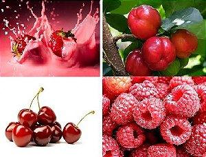 Líquido e-Health Frutas Vermelhas
