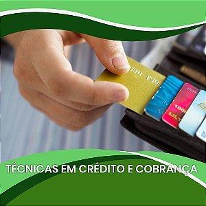 Técnicas em Crédito e Cobrança