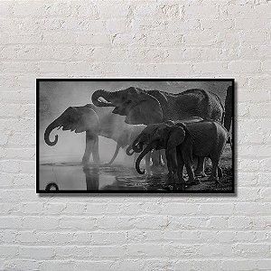 Quadro Decorativo Elefantes