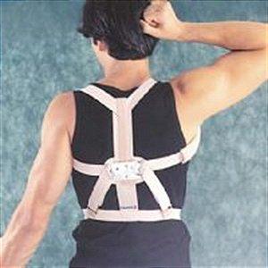 Espaldeira para Postura