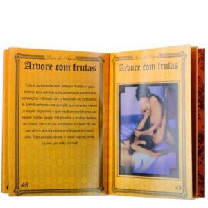 Manual do Kamasutra - O livro do amor Ktoy - Sexshop