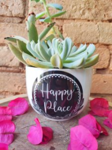 "Vaso M "" Happy Place"""