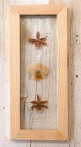 Quadro de flores naturais - Orquídea central