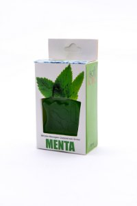 GEL ICE MENTA 30ML