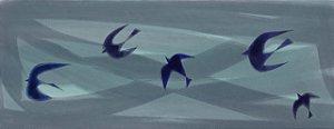 Birds acqua