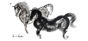 CANECA - Cavalos