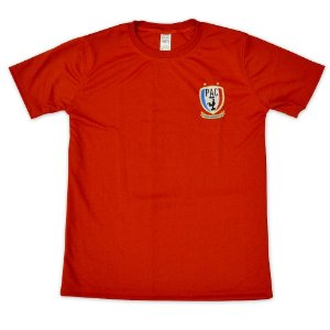 Camiseta treino PAC