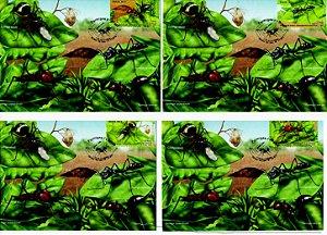 2013 Máximos Postais Formigas - Série completa