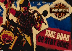 Placa MDF 28 x 20 - Ride Hard