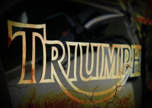 Placa MDF 28 x 20 - Triumph