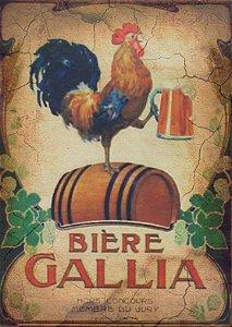Placa MDF 28 x 20 - Biere Gallia