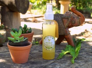 Repelente Natural 60ml Óleos de Andiroba Neem / Óleos essenciais de Citronela, Capim Limão e Lavanda.