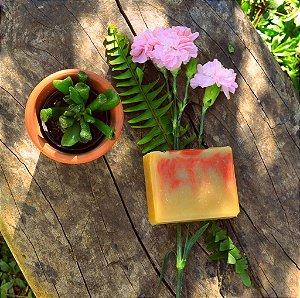 Sabonete e Xampu Sólido - Feminino TPM Castanha/Pracaxi/Oliva/Coco -  Laranja/Lavanda/Gerânio - Argila Vermelha. 130g