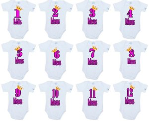 Body KIT MEUS MESES MESVERSÁRIO 12 BODIES PEQUENA PRINCESA MENINAS - Roupinhas Macacão Infantil Bodies Roupa Manga Longa Menino Menina Personalizados